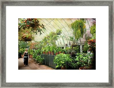Greenhouse Stroll Framed Print by Diana Angstadt
