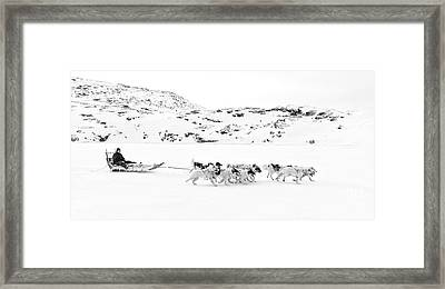 On The Trail To Home Framed Print