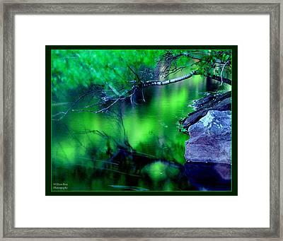 Greens 01 Framed Print by William Bray