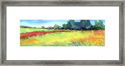 Greenville Hayfield Framed Print by Virgil Carter