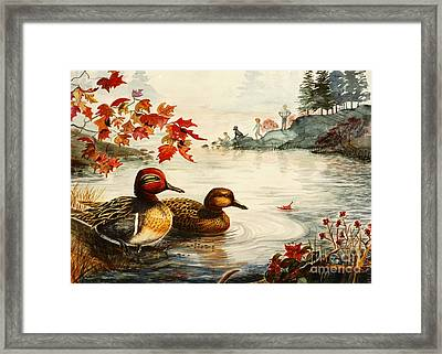 Greenwinged Teal Ducks Framed Print by Marilyn Smith