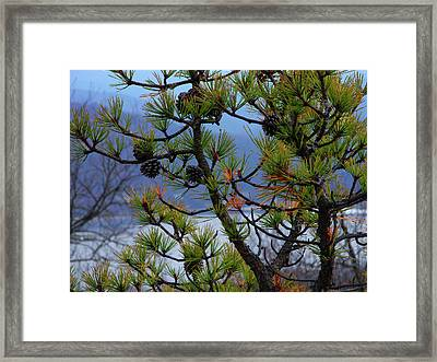Greenwood Lake Framed Print by Raymond Salani III