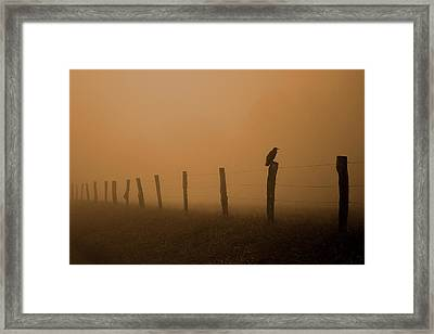 Greeting The Morning Framed Print by Michael Eingle