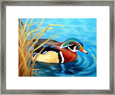 Greeting  The Morning  Wood Duck Framed Print by Carol Reynolds