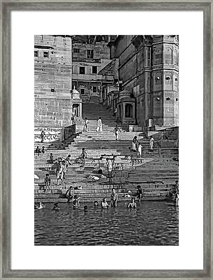 Greeting The Sun Bw Framed Print by Steve Harrington