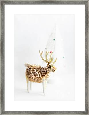 Framed Print featuring the photograph Greetings From North Pole by Elena Nosyreva