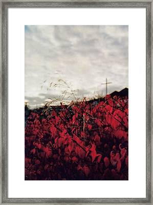 Grey And Red Framed Print by Sergey and Svetlana Nassyrov