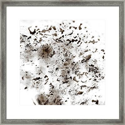 Grey Moss Abstract Framed Print
