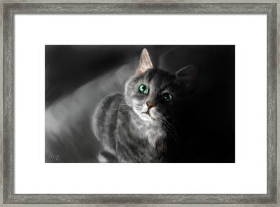 Grey On Gray Framed Print by Peggy Hickey