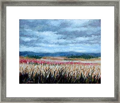 Grey Sky Framed Print by John  Nolan