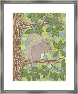 Grey Squirrel Framed Print by Pamela Schiermeyer
