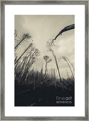 Grey Winds Bellow  Framed Print
