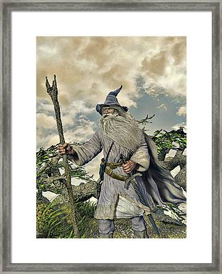 Grey Wizard II Framed Print by Dave Luebbert