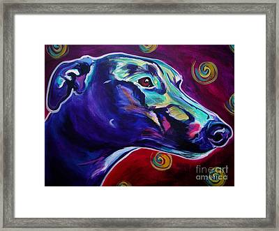 Greyhound -  Framed Print by Alicia VanNoy Call