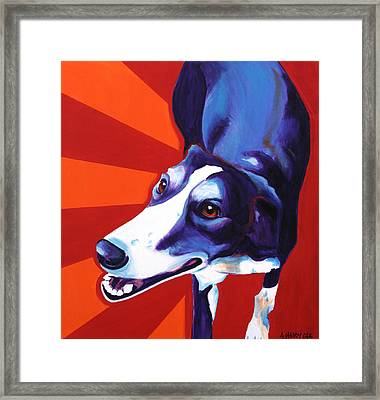 Lurcher - Evie Framed Print by Alicia VanNoy Call