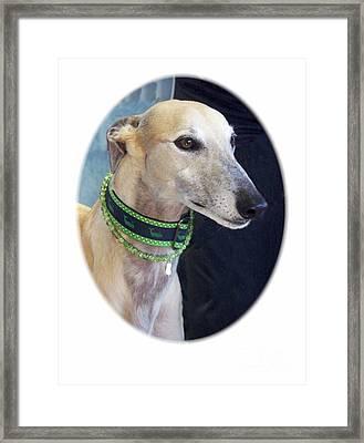 Greyhound 606 Framed Print by Larry Matthews
