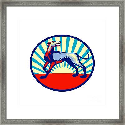 Greyhound Dog Angry Looking Up Circle Retro Framed Print