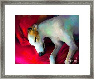 Greyhound Dog Portrait  Framed Print