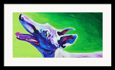 Retired Racer Dog Portrait Framed Prints