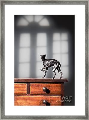 Greyhound Figure In Bronze Framed Print by Amanda Elwell