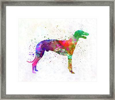 Greyhound In Watercolor Framed Print