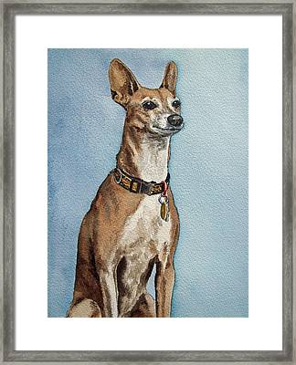 Greyhound Commission Painting By Irina Sztukowski Framed Print