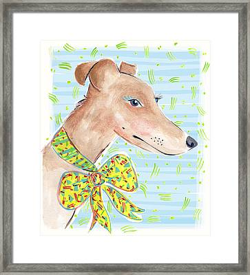 Greyhound Framed Print by Jo Chambers