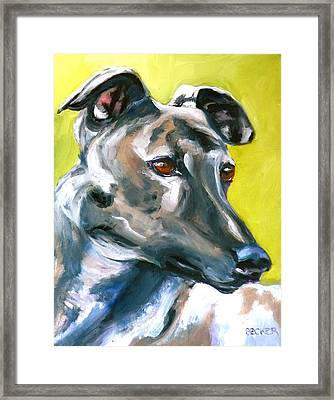 Greyhound Framed Print