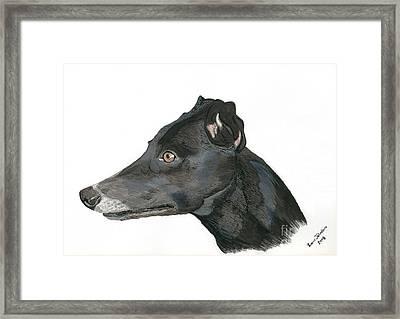 Greyhound Framed Print by Yvonne Johnstone
