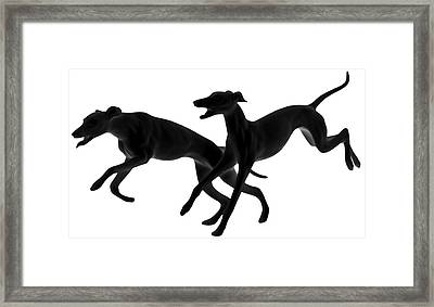 Greyhounds Travelling At 45 Mph Framed Print by Christine Till