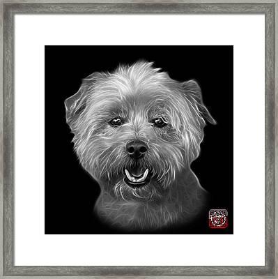 Greyscale West Highland Terrier Mix - 8674 - Bb Framed Print