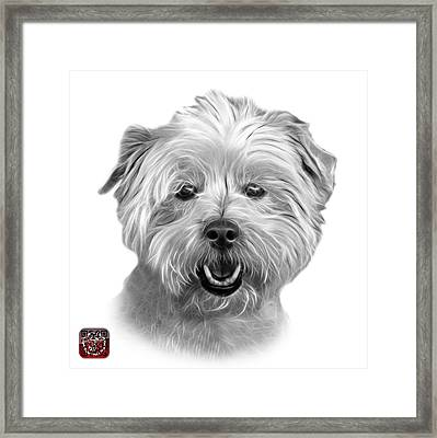 Greyscale West Highland Terrier Mix - 8674 - Wb Framed Print
