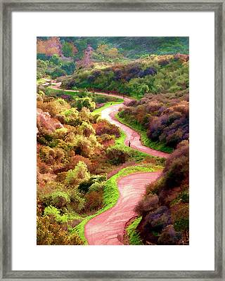Griffith Park Trail Framed Print by Timothy Bulone