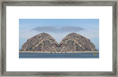 Grinch Of The Rock In Morro Rock Framed Print by Gary Canant