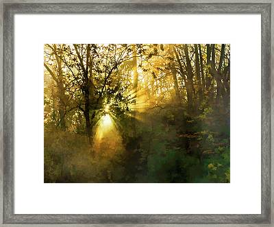 Grings Mill Fog 15-039 Framed Print