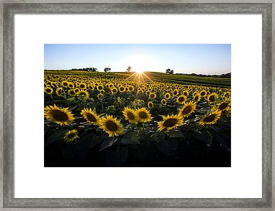 Grinter Farms Sunset 2 Framed Print
