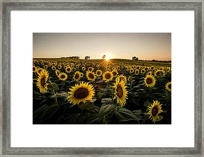 Grinter Farms Sunset 3 Framed Print