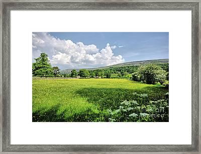 Grinton Meadows Framed Print by Nichola Denny