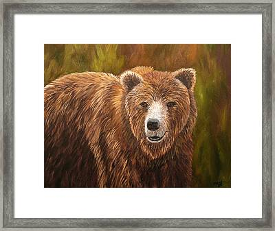 Grizzley Framed Print