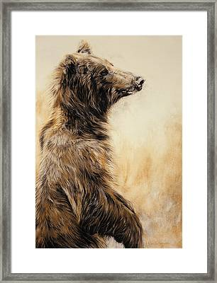 Grizzly Bear 2 Framed Print by Odile Kidd