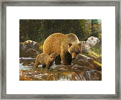 Grizzly Bear And Cub Framed Print by Robert May