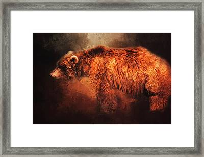 Framed Print featuring the photograph Grizzly Bear  by Toni Hopper