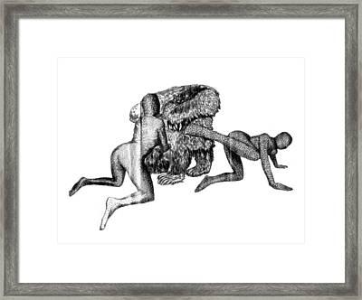 Grizzly Chair Framed Print by Lusza Z Opolskiego