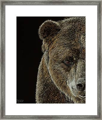 Grizzly Eye Framed Print