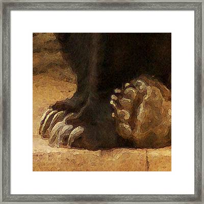 Grizzly Paws Framed Print by Jack Zulli