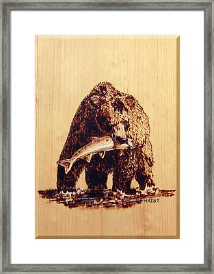 Framed Print featuring the pyrography Grizzly by Ron Haist