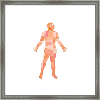 Gross Anatomy Male Isolated Low Polygon Framed Print