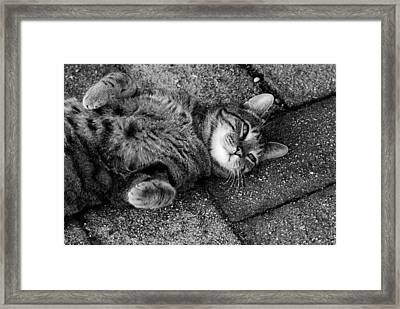 Ground Work Framed Print