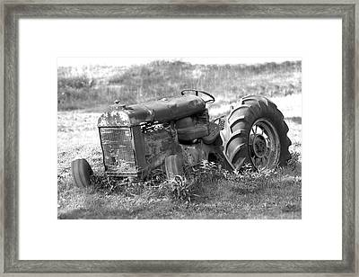 Grounded Framed Print