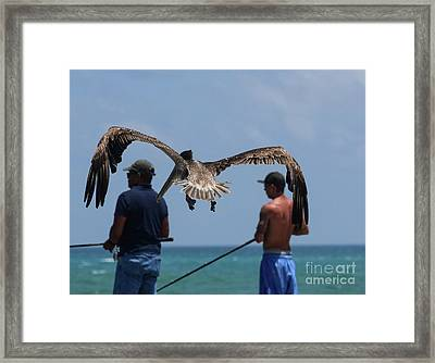 Group Hug Framed Print